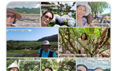 Chef Jill Sandique's Cacao Journey